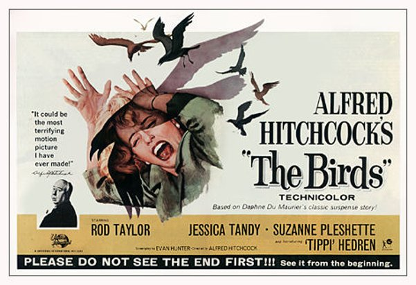"Los pájaros (""The birds""). Alfred Hitchcock, 1963."