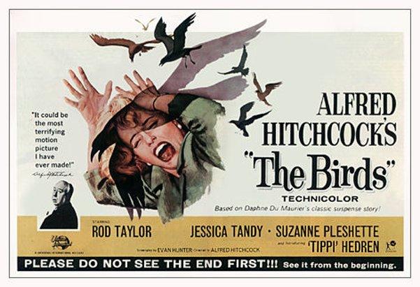 """Los pájaros (""""The birds""""). Alfred Hitchcock, 1963."""